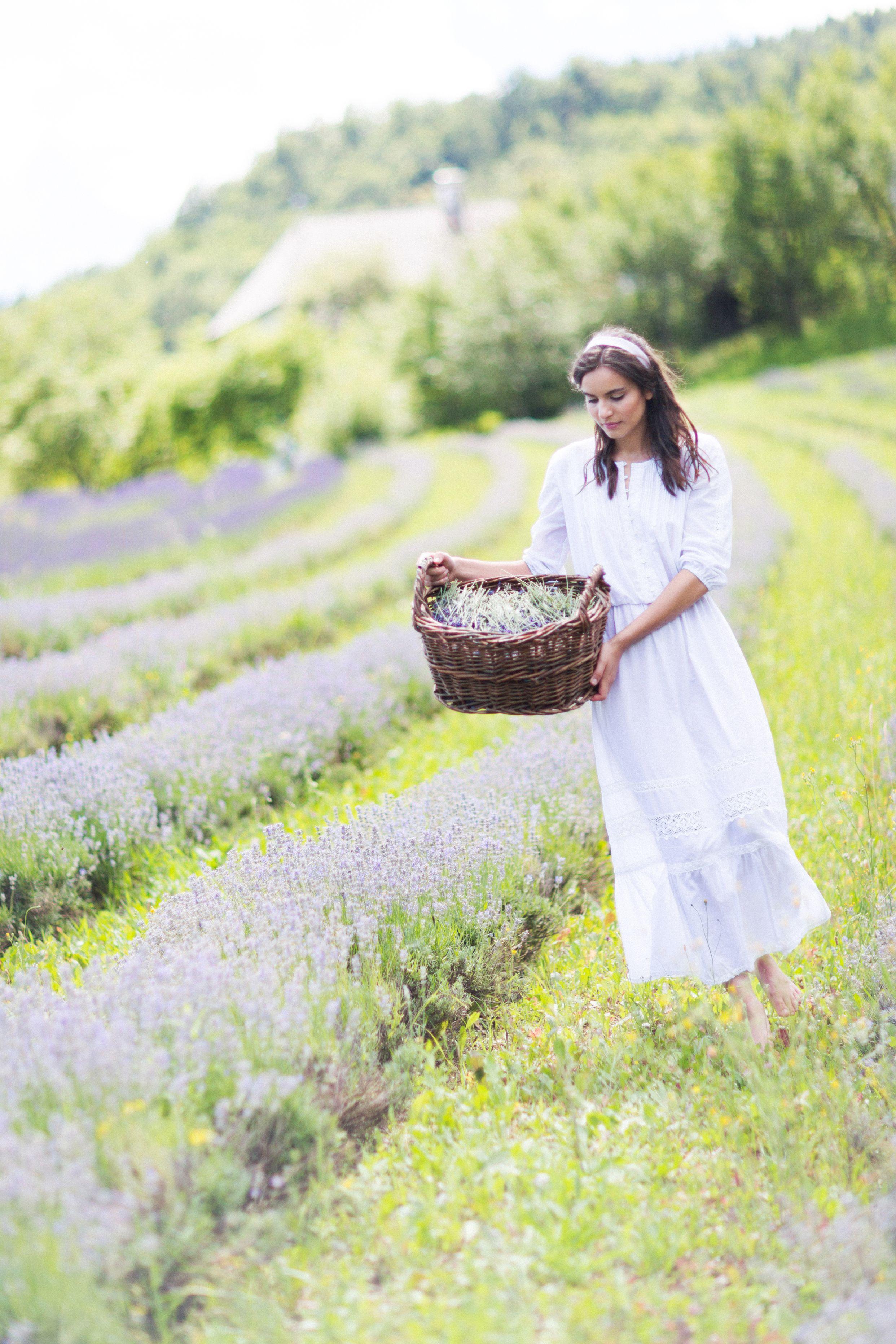 SvetlanaGombats _LavenderFarm _(13)